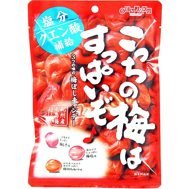 糖果 超酸風味梅糖 南高梅 76g 日本製造進口
