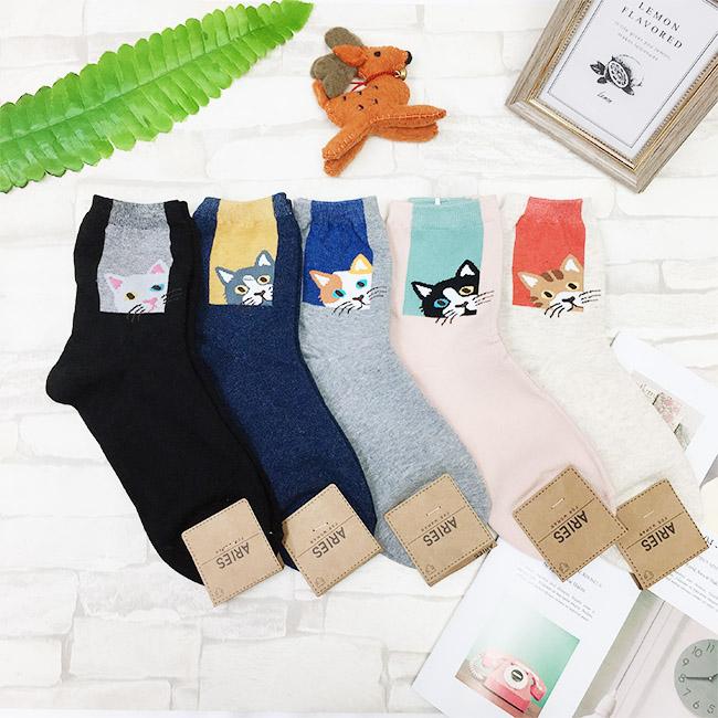 韓國 22-26cm 貓咪 框框 黑 藍 灰 粉 米 中長襪 成人襪 襪子