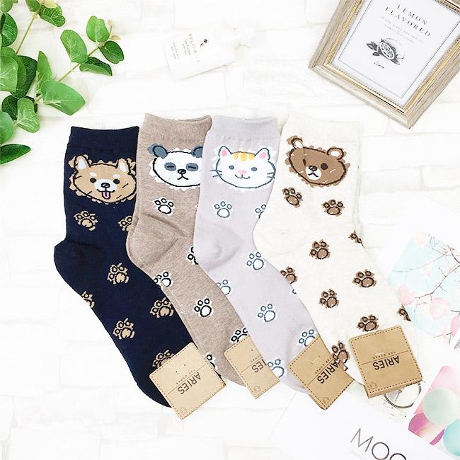 韓國 22-26cm 熊熊 滿版 黑 灰 咖啡 米 中長襪 成人襪 襪子